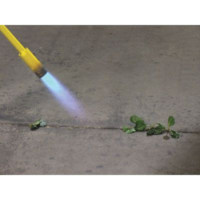 Mini Dragon Cane Torch — 18,000 BTU, Model# VT1-32C this is so my way to weed. Lmao
