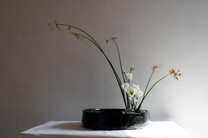 Ikebana e comunicazione