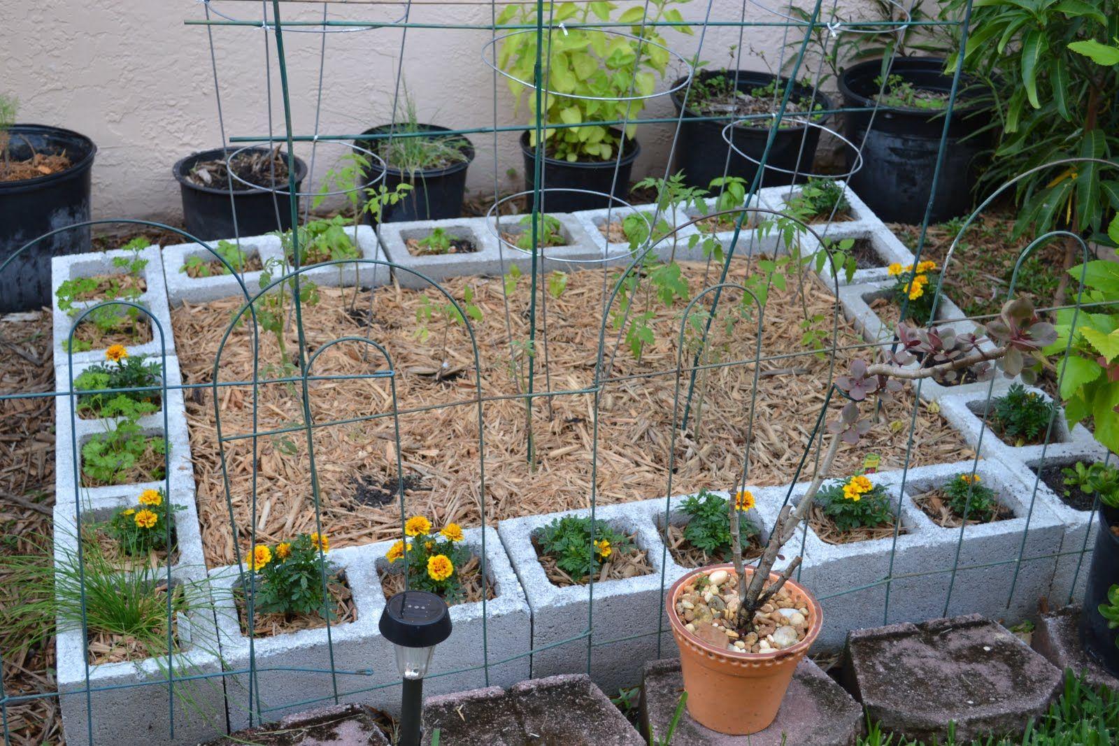 Diy cinder block raised garden bed spray paint the cinder block for more color jardiner a for Painting cinder blocks for garden