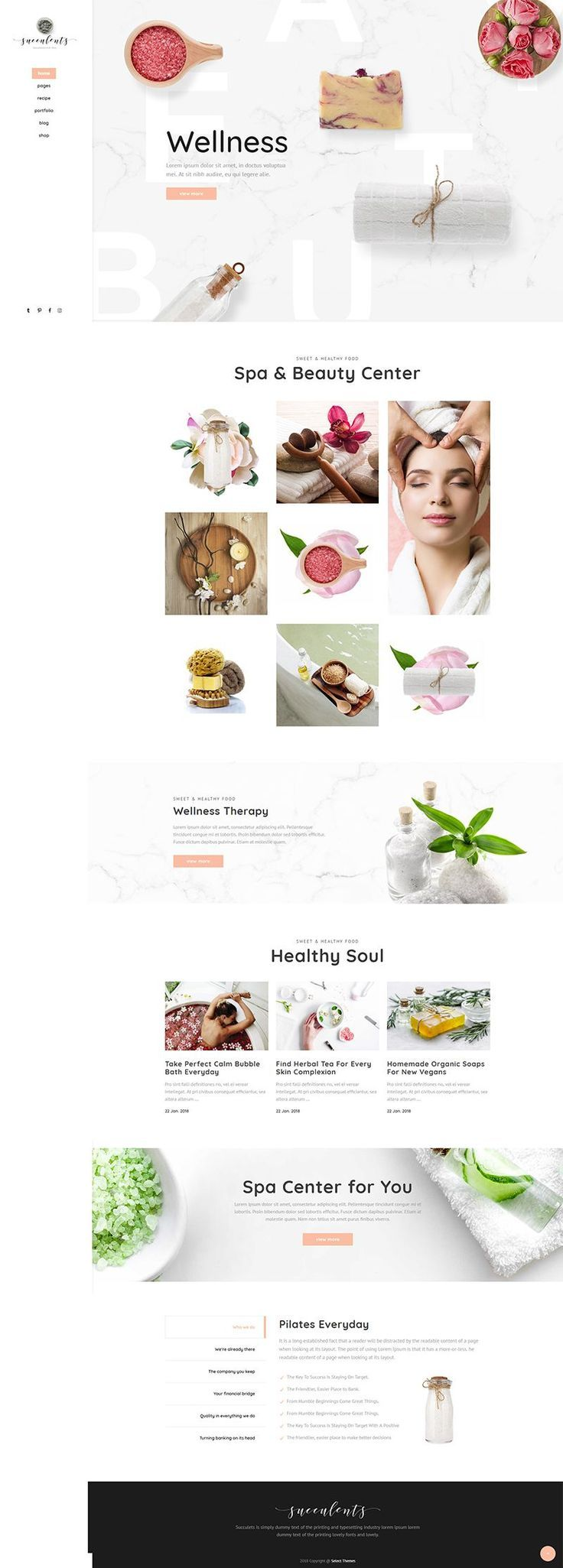 Succulents WordPress theme is made for business from healthy food businesses to skin care industry....