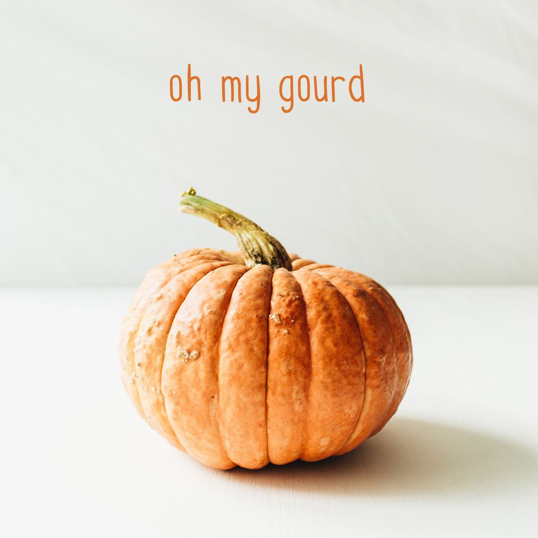 Oh My Gourd It S National Pumpkin Day Unique Wedding Invitations Pumpkin Wedding Invitations
