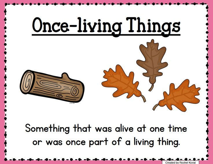 Living And Nonliving Exploration Unit Living And Nonliving Science Teaching Resources Free Science Lesson