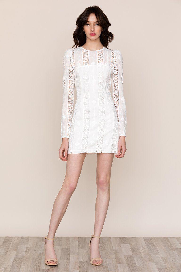 Lace Lace Dresses