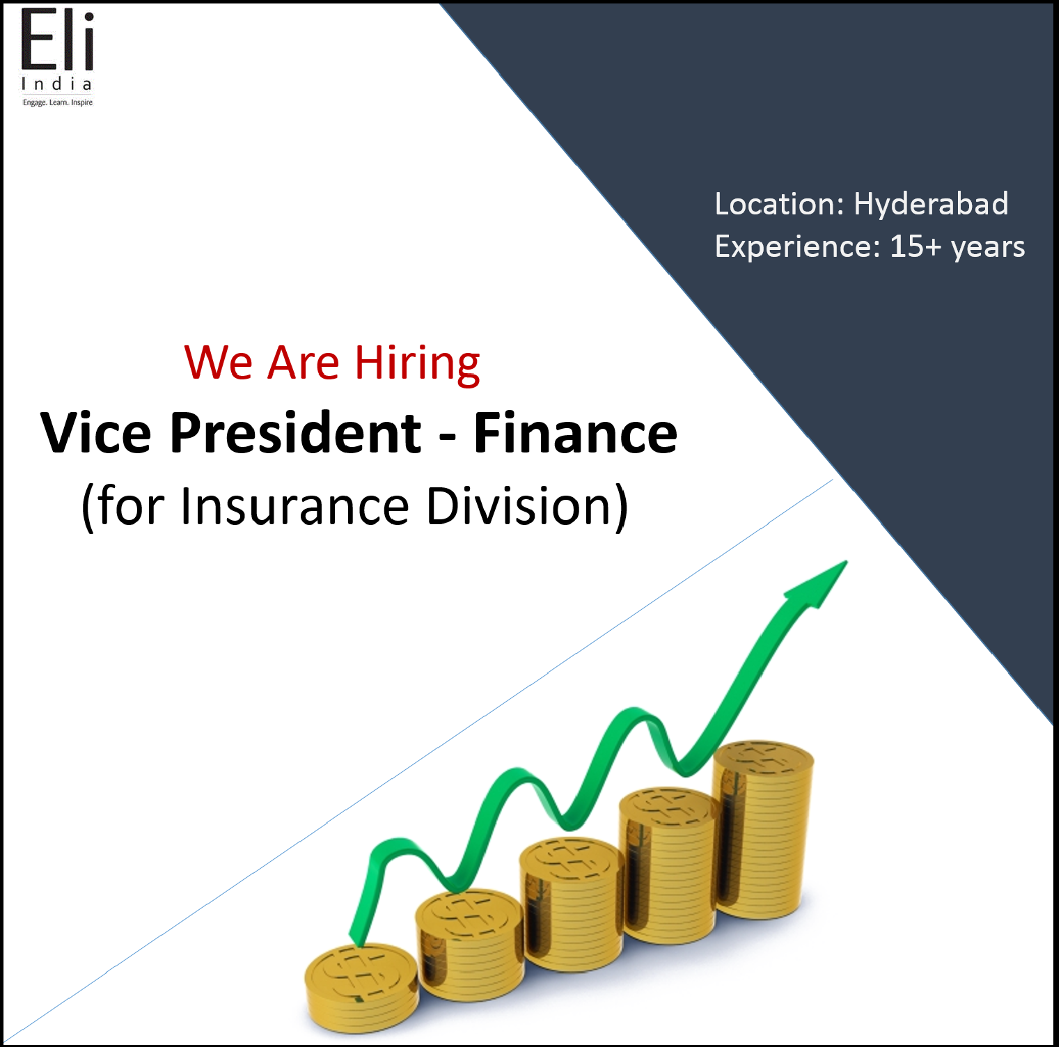 Eli India is looking for Vice President Finance (for