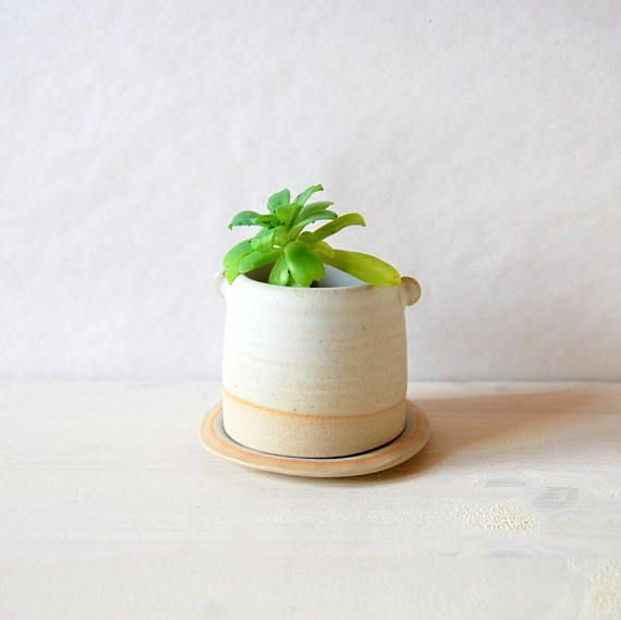 Small Plant Pot Cactus Succulent Drainage Hole Ceramic And Pottery Holder White Handmade