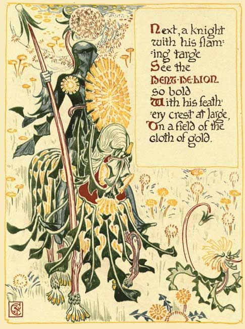 Dandelion knight illustration by Walter Crane (1845-1915) for the book A Floral Fantasy in an Old English Garden, 1899