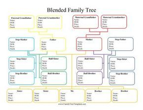 Family Tree Template With Statistics Google Search Family Tree