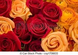 Resultado de imagem para arranjos de flores laranja e vermelho