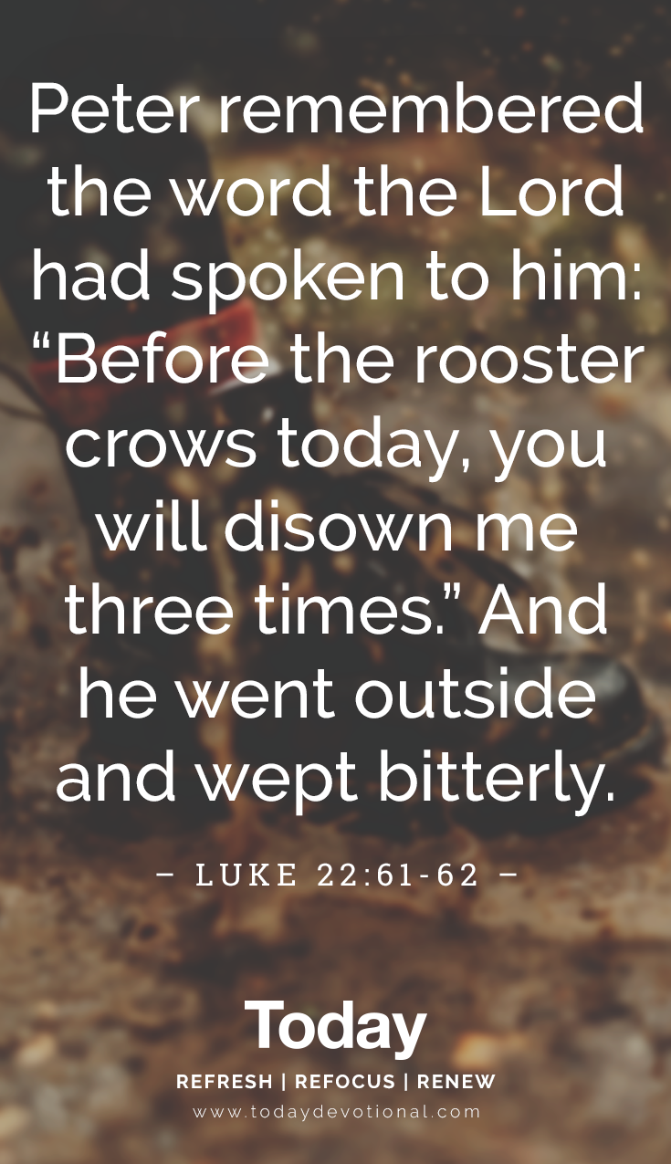 Before The Rooster Crows In 2020 Daily Devotional Scripture Quotes Devotions