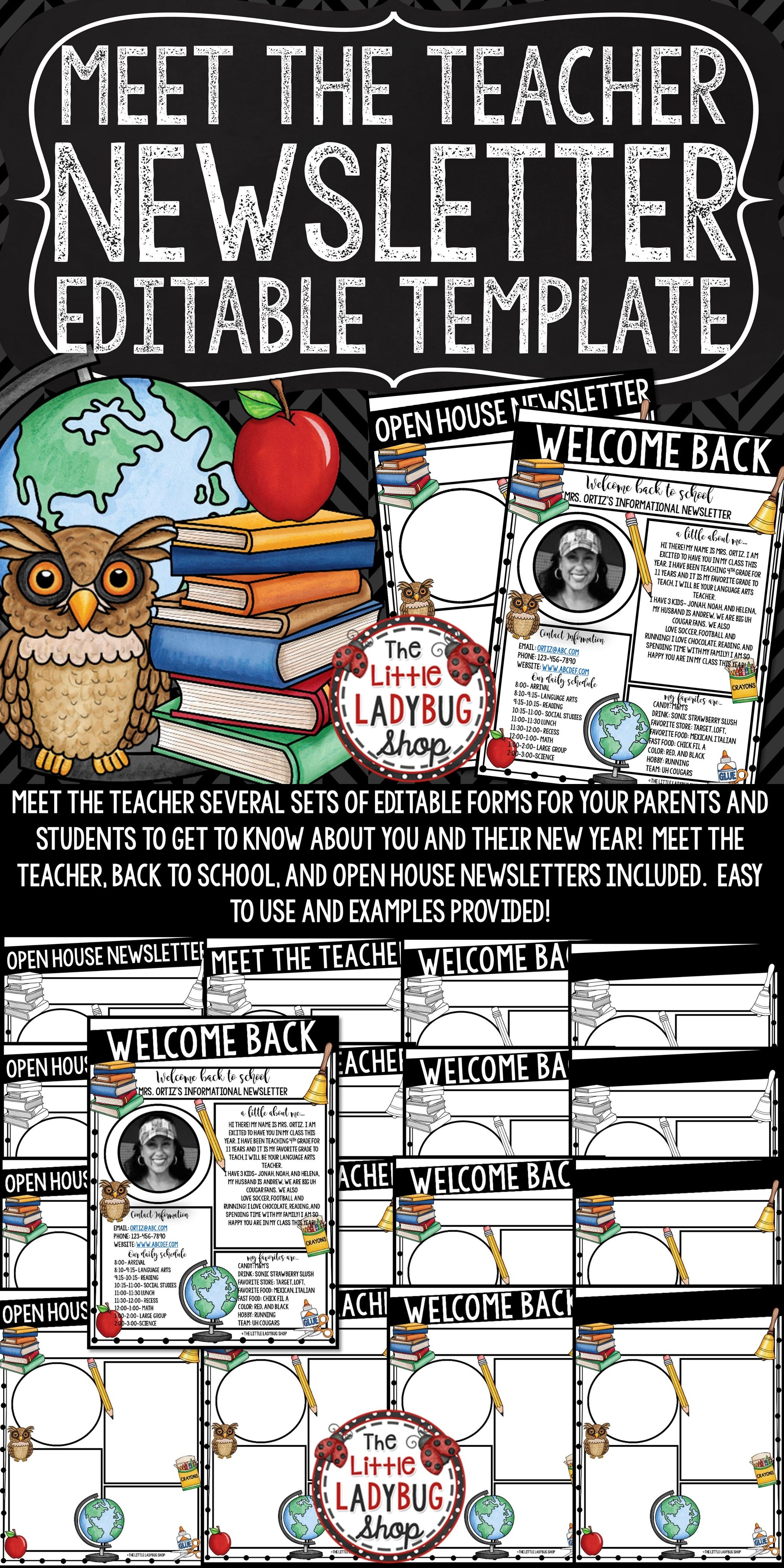 2fb89b010e49164464ad0bcef7a4c38b Teacher Introduction Newsletter Template on owl theme, for first grade, free preschool,