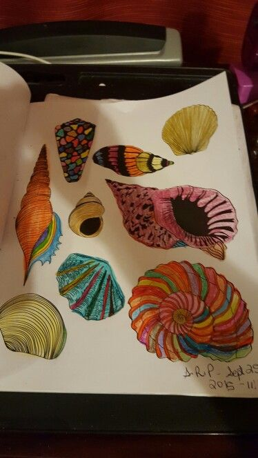 Sea Shalls I Color From The Colorama Coloring Book Colorful Art Coloring Books Color