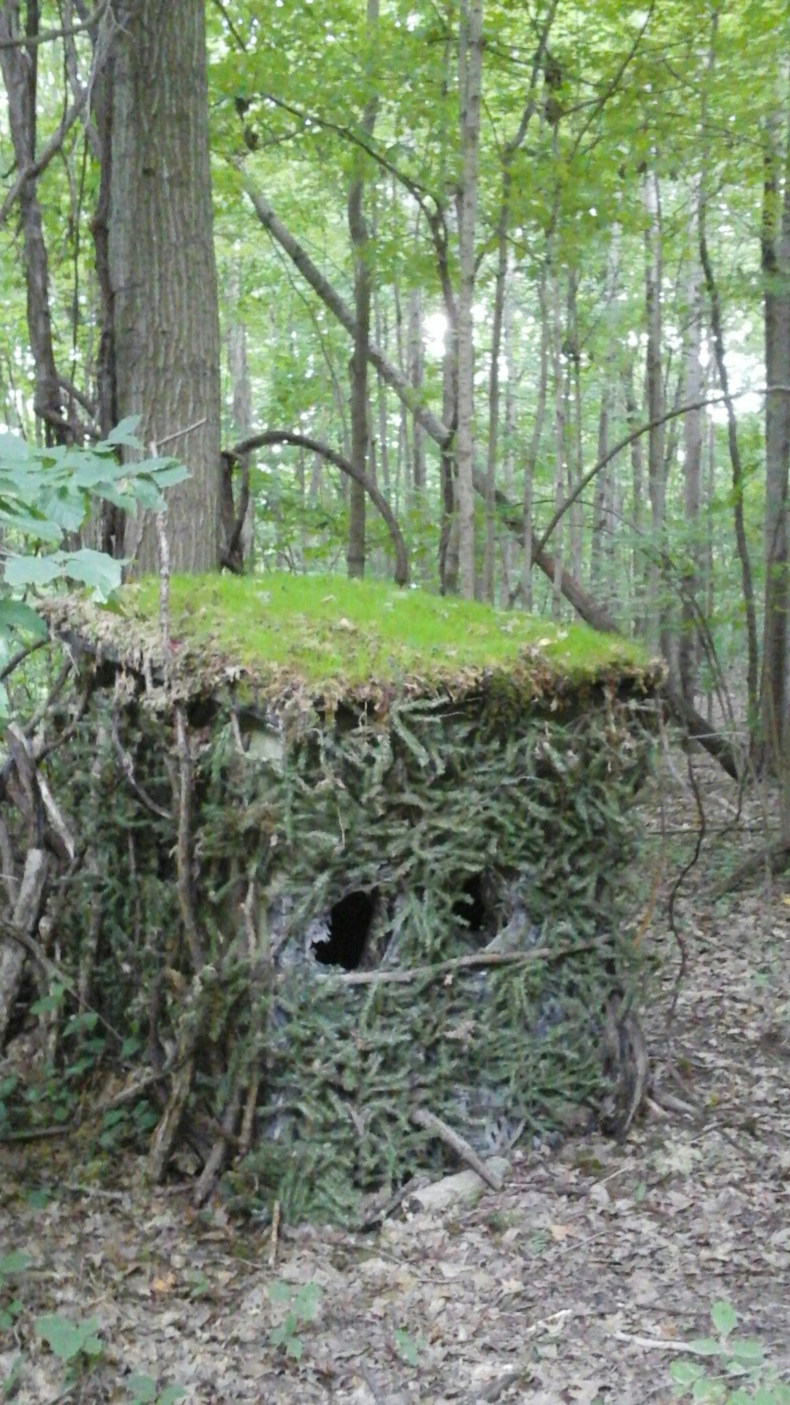 Ground Blind Made From Garden Tractor Crates Old Artificial Christmas Trees A Metal Roof But With Real Moss An Deer Hunting Stands Hunting Blinds Deer Blind