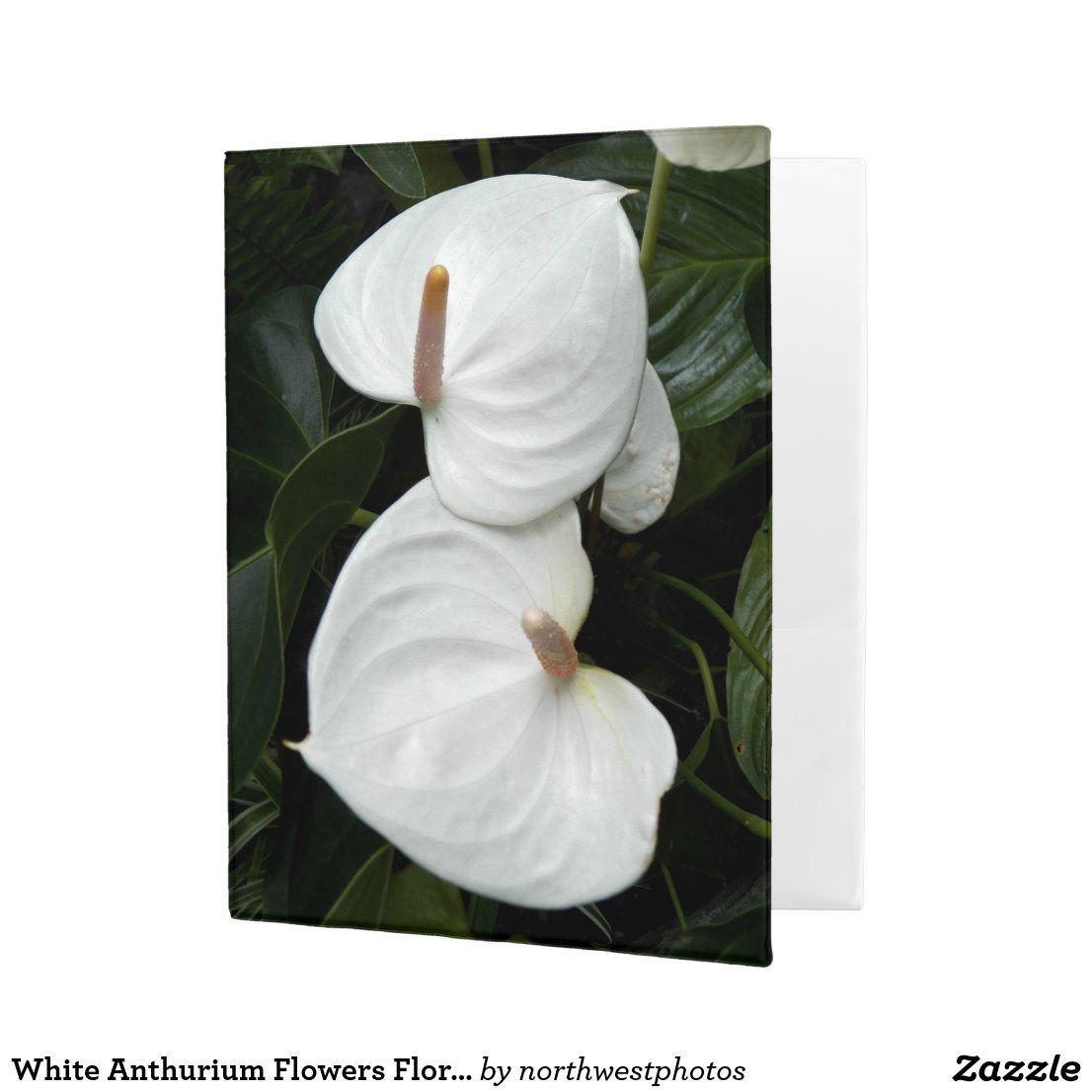 White Anthurium Flowers Floral Photo Mini Binder Zazzle Com Anthurium Flower Anthurium Floral Photography Nature