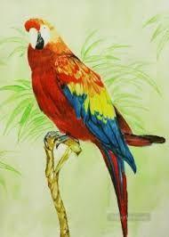 marjolein bastin birds - Google Search
