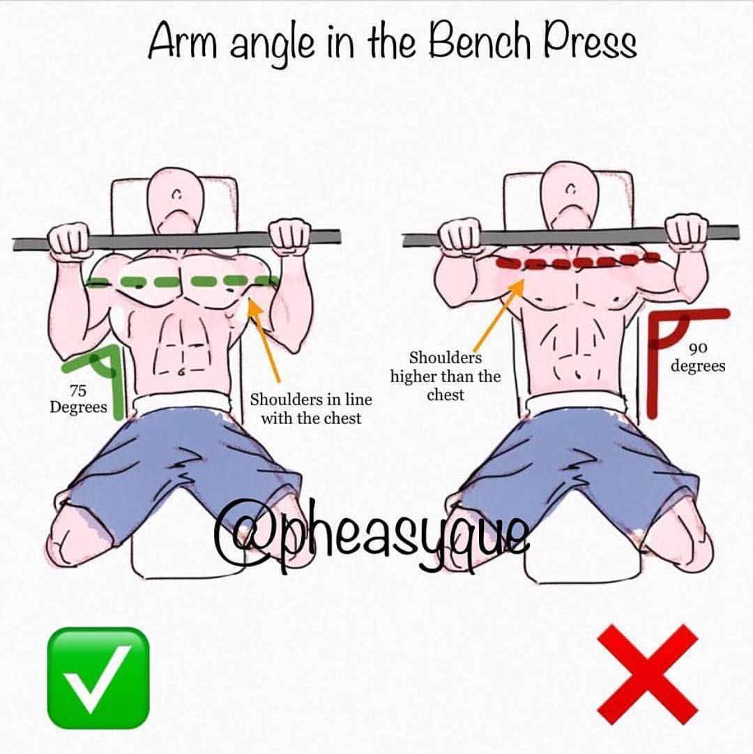 Pin By Murasma Don T Tell On Sport And Exercise Chest Workouts Weight Training Workouts Bar Workout