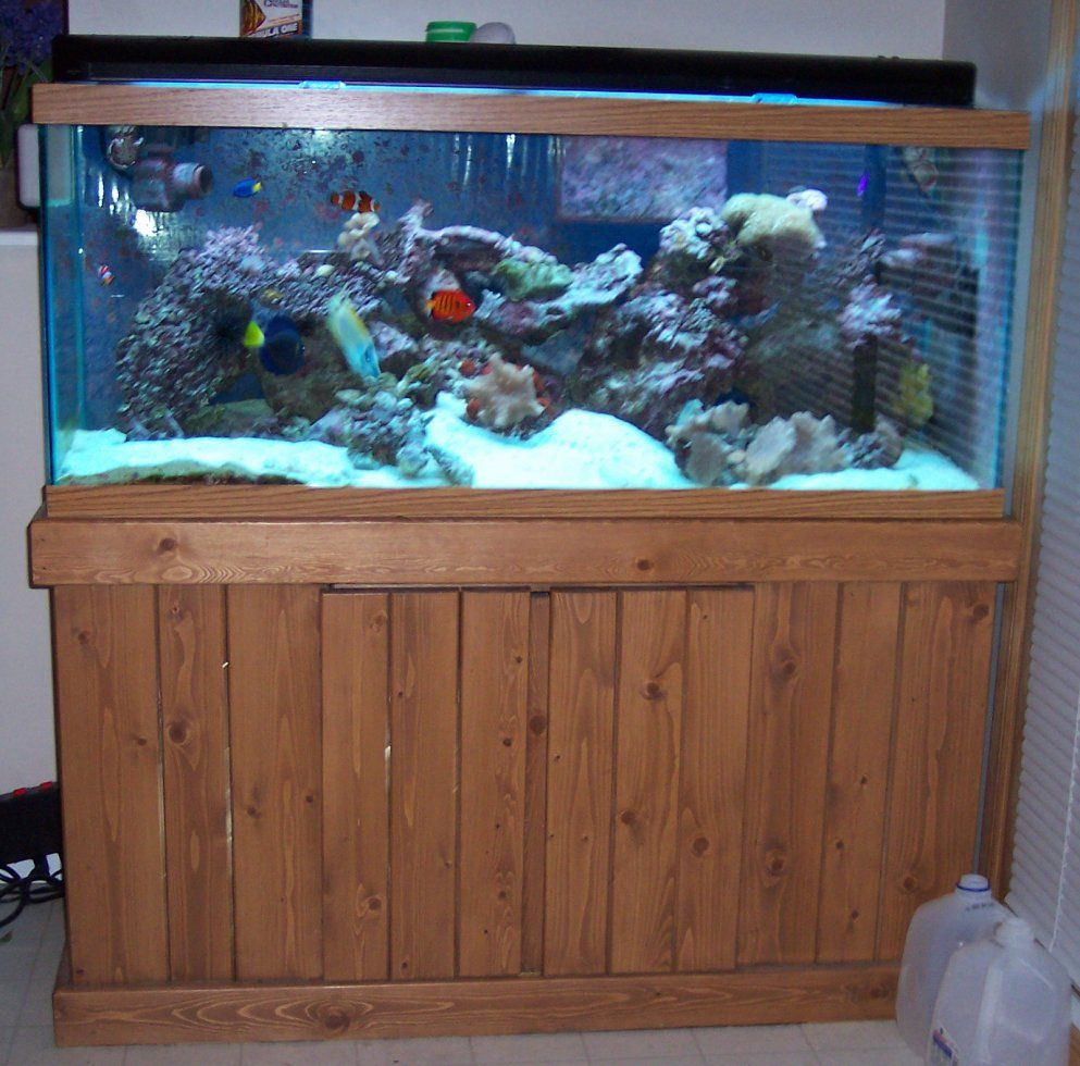 Construction photos and plans for building an aquarium for Construction aquarium