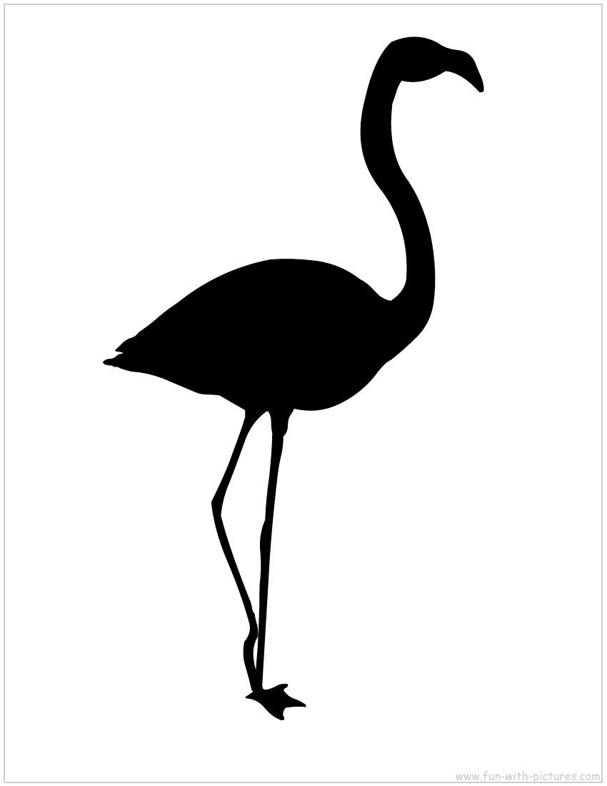 silhouette if you re tired of pink funky flamingos pinterest rh pinterest com flamingo black and white clipart flamingo black and white clipart