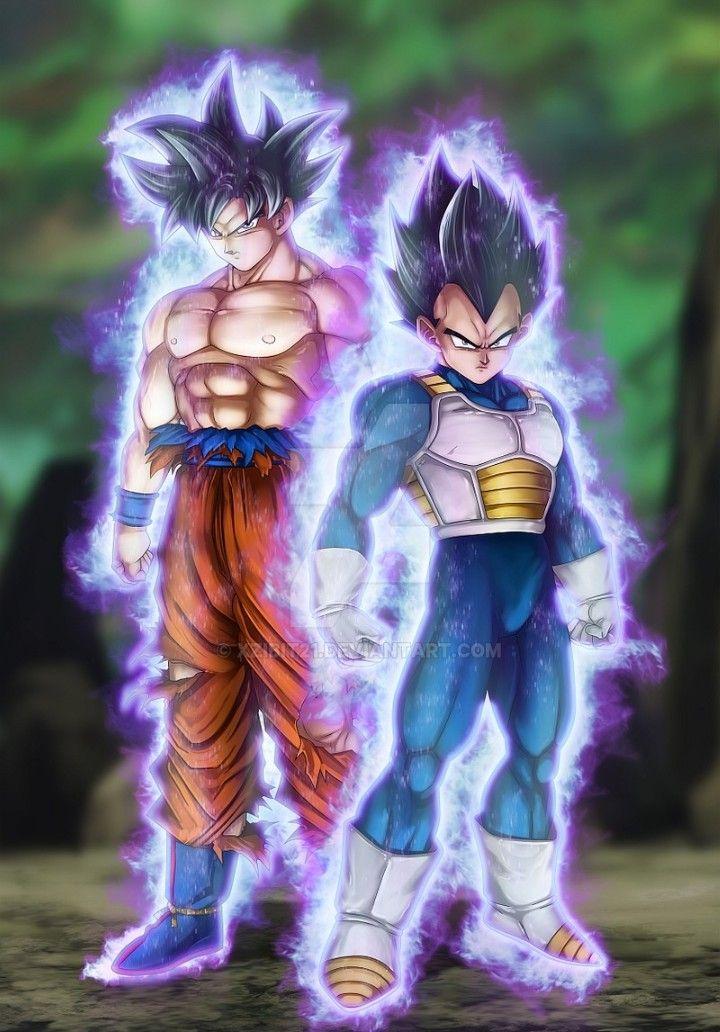 Goku And Vegeta Ultra Instinct Dragon Ball Super Personnages De Dragon Ball Goku Fond Ecran Manga