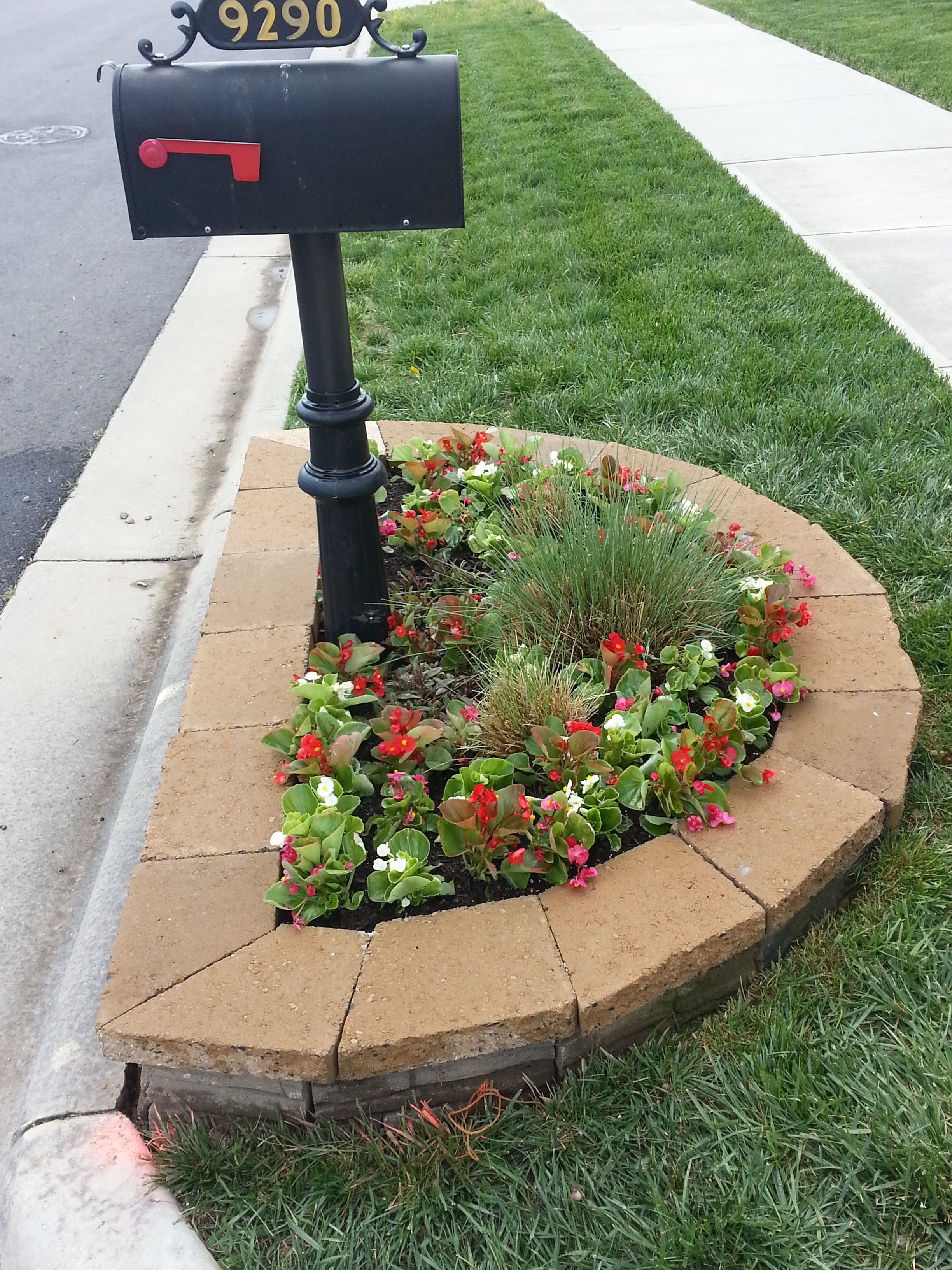 simple stone border around mailbox colorful annual flowers