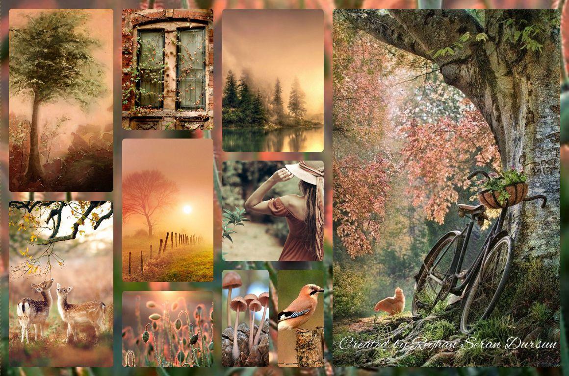 '' Peach and Green Forest ''  by Reyhan Seran Dursun