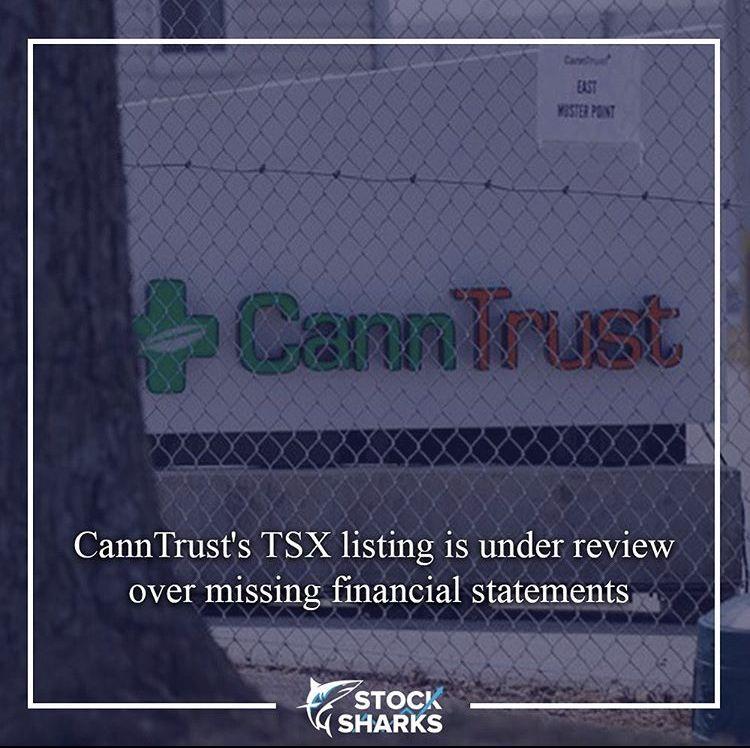 Canntrust financial statement financial statement