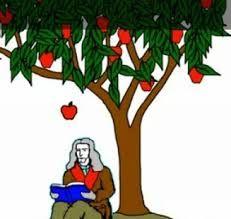 عالم السير إسحاق نيوتن عالم إنجليزي يعد من أبرز العلما مساهمة في الفيزياء والرياضيات عبر العصور وأ Islamic Kids Activities Christmas Ornaments Islam For Kids