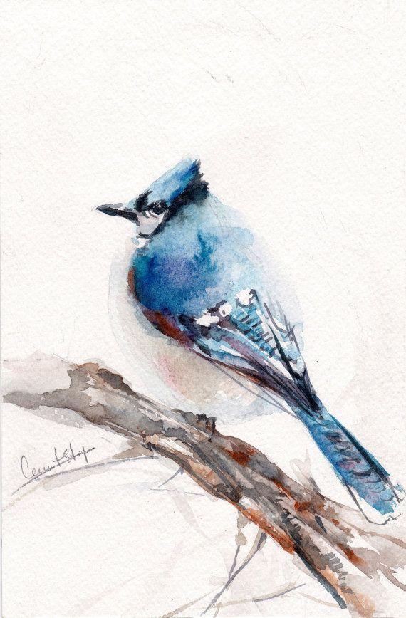 Bird Original Painting Watercolor Painting Of Blue Jay Bird