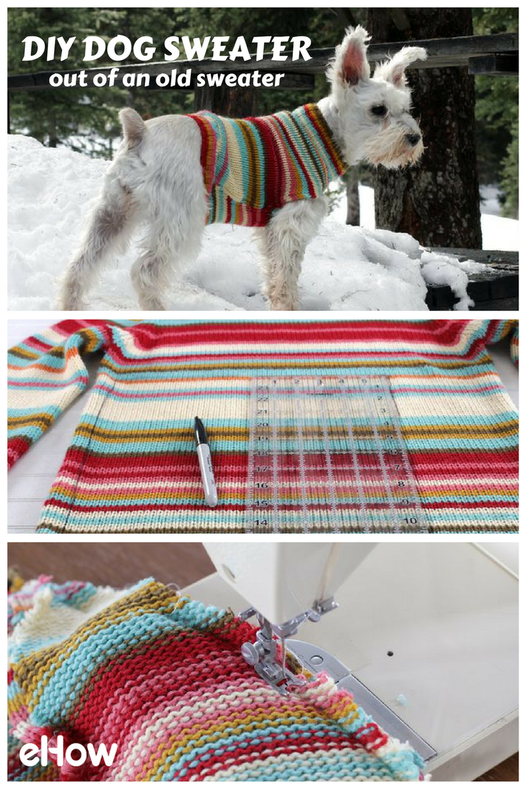 788fe51b3407 Use an old sweater in your closet and upcycle it into the perfect winter  wear for your fury friend! Keep them warm and stylish with this easy DIY!  #dogdiy