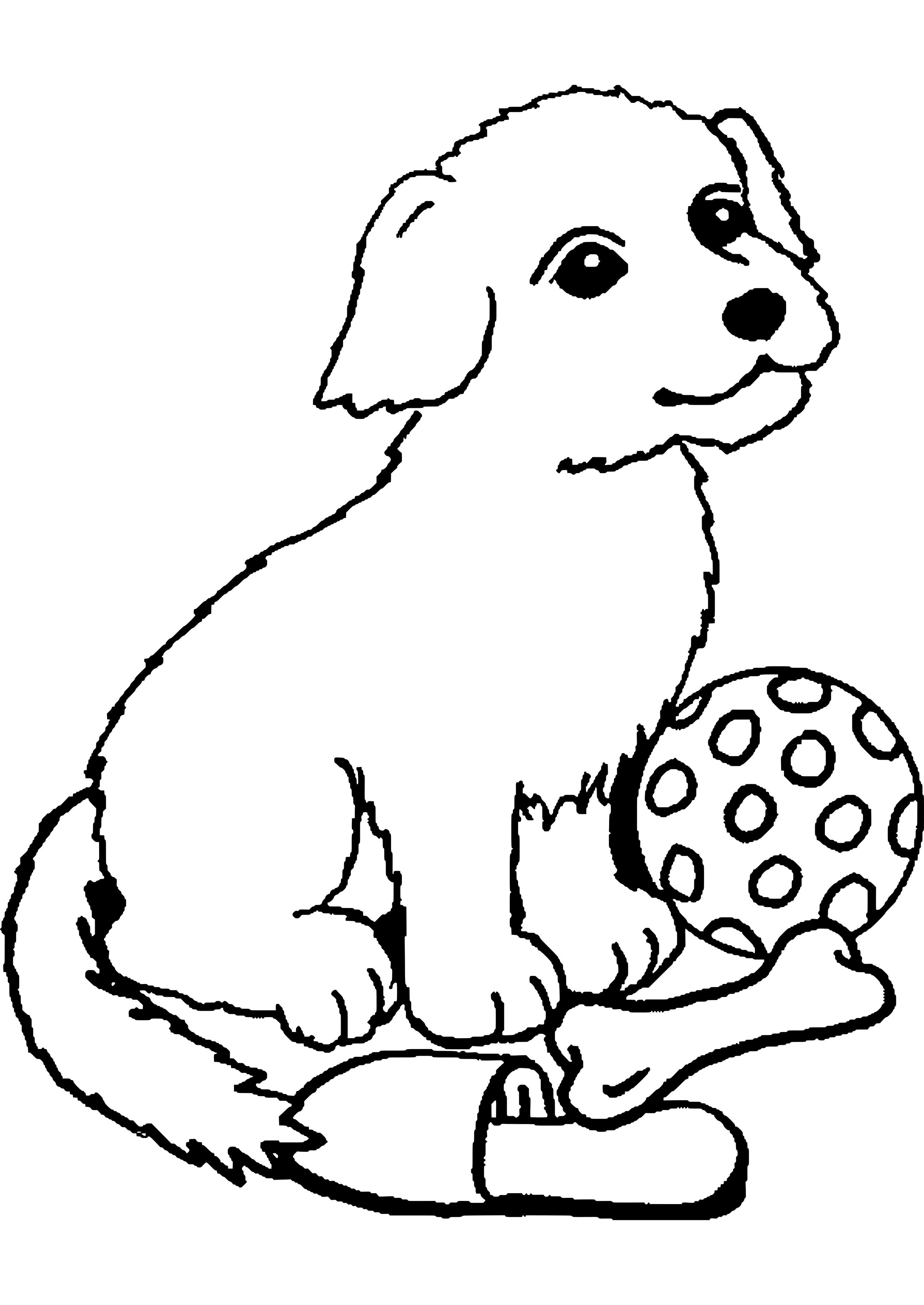 Hund Malvorlage Ausmalbilder Hunde Malvorlage Hund Ausmalbilder Tiere [ 4200 x 2975 Pixel ]