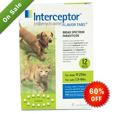 60 Off On Interceptor For Dogs 11 25 Lbs Green Buy Now Http Bit Ly 2bqthaf Pets Petsafety Petcare Canadavete Heartworm Heartworm Disease Dogs