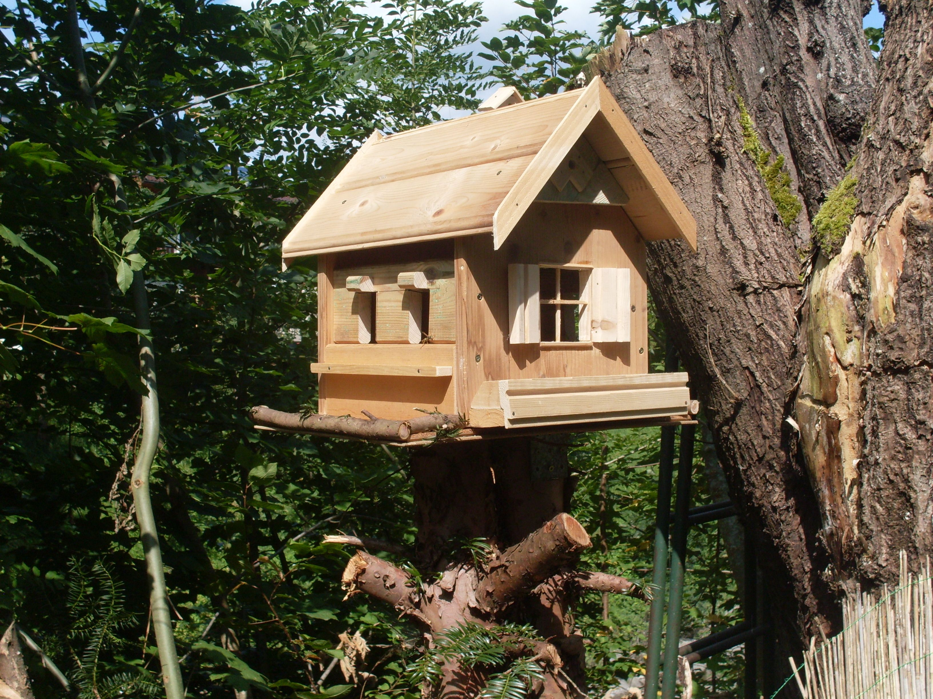pin von gerhard lechner auf vogel h user pinterest. Black Bedroom Furniture Sets. Home Design Ideas