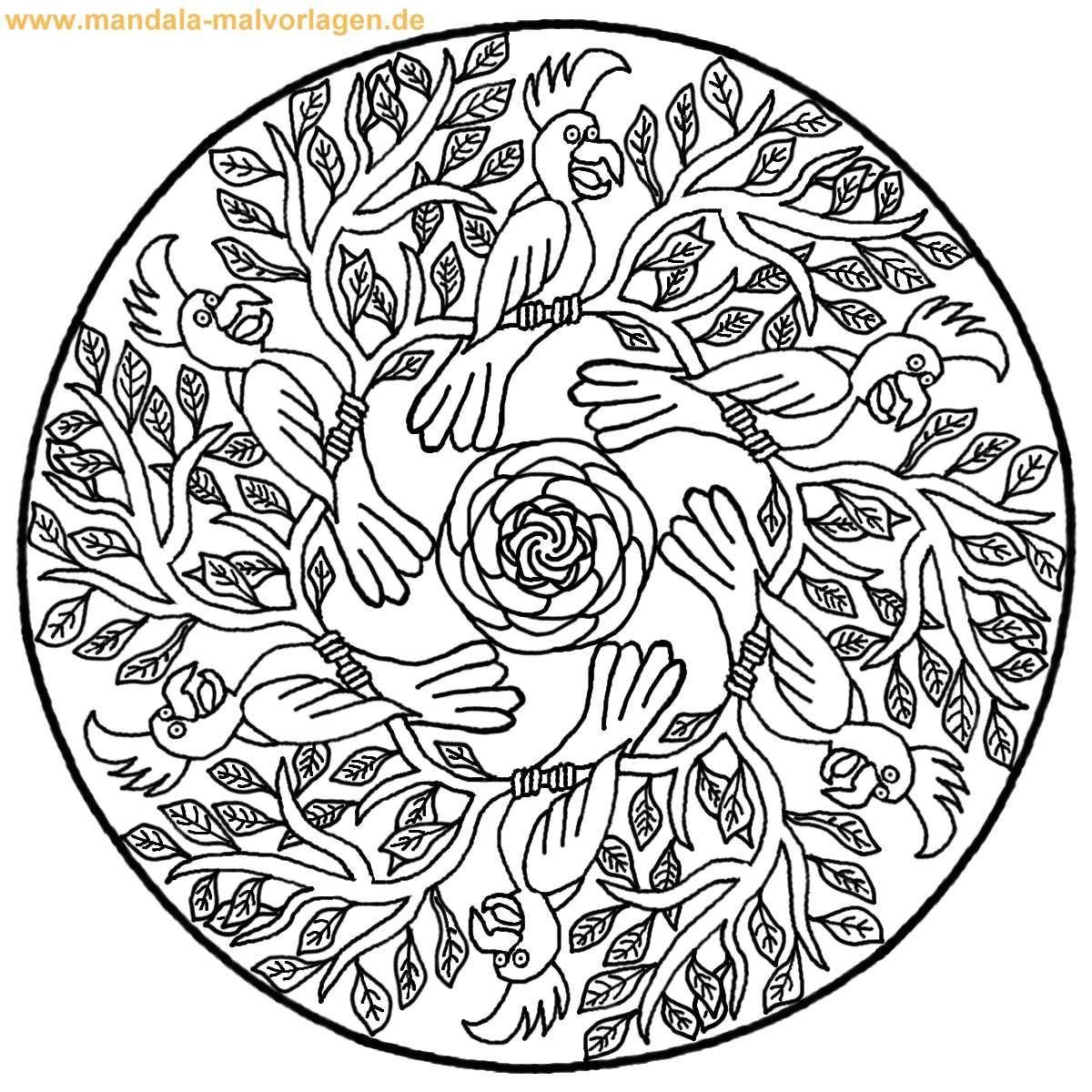 Tiere Papagei Malvorlage Mandala fuer Kinder 1200—1200