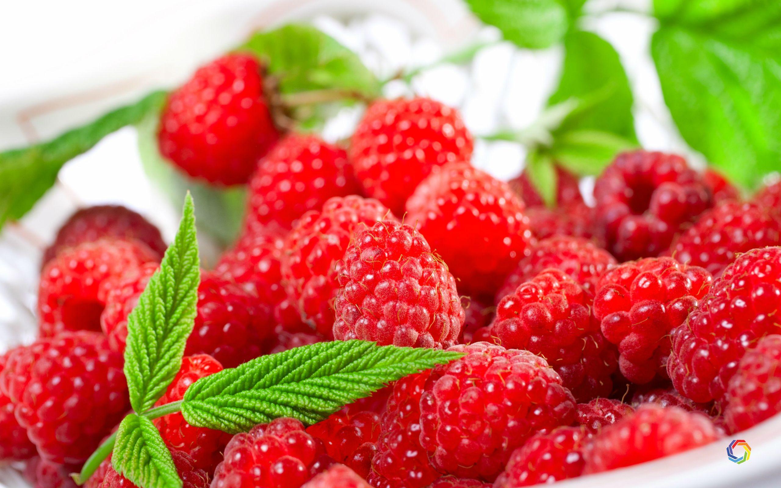 Download Strawberry Amazing 4K Wallpaper Download HD