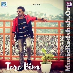 Tere Bina 2019 Indian Pop Mp3 Songs Download Mp3 Song Mp3 Song Download Pop Mp3