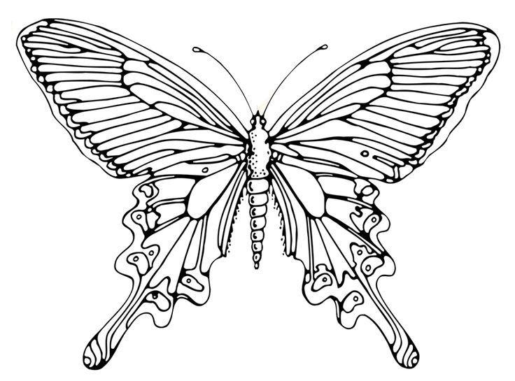 Ausmalbilder Schmetterling Ausmalbilder Schmetterling Ausmalbilder Schmetterling Schmetterlinge Basteln Schmetterling Ausmalen
