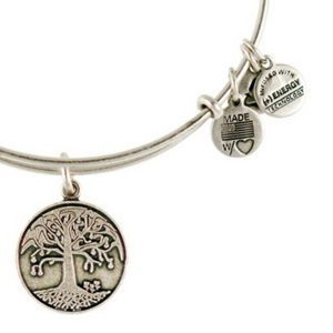 Alex And Ani Tree Of Life Charm Bangle Find It At Your Nearest Matty