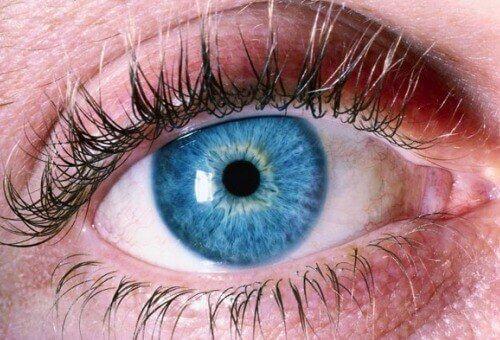 Viimeaikaiset Yhdysvalloissa ja Kiinassa tehdyt tutkimukset ovat osoittaneet, että on mahdollista havaita Alzheimerin tauti silmistä.