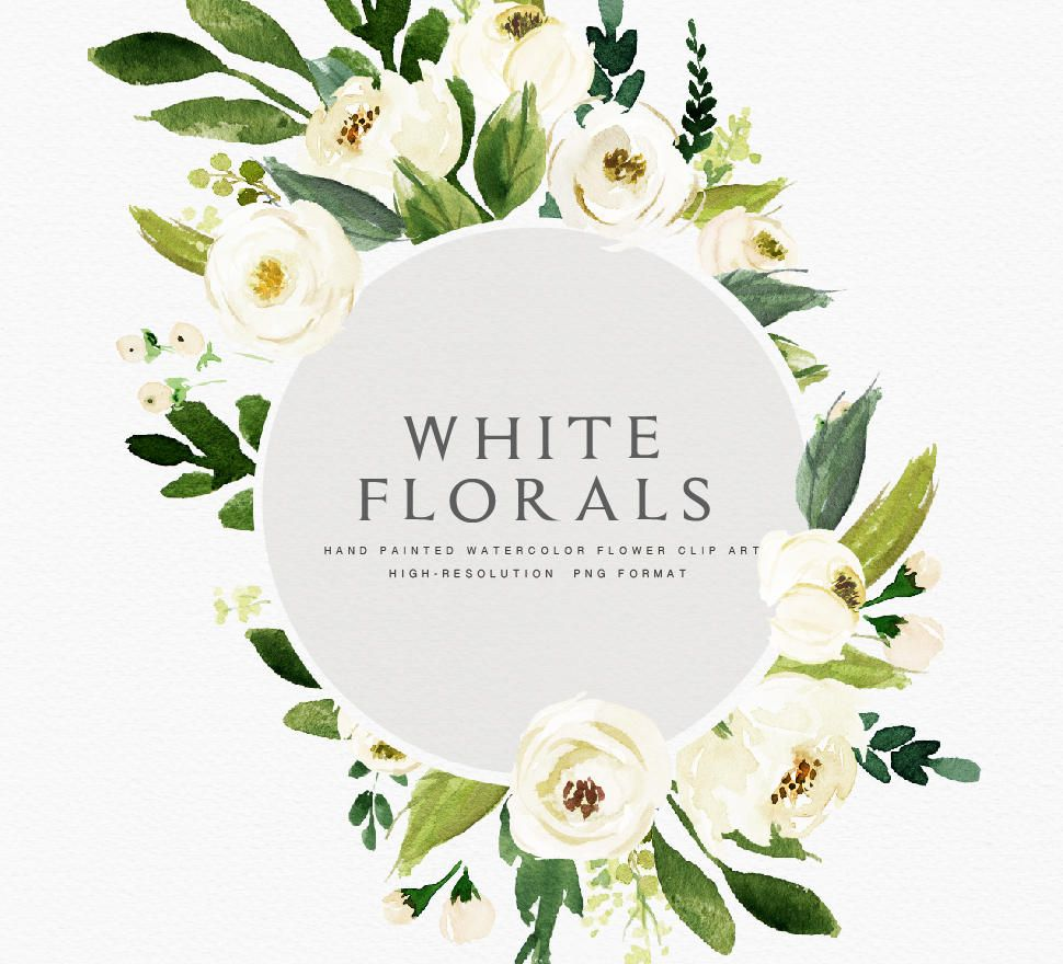 Related Image White Flower Clip Flower Clipart Floral Watercolor