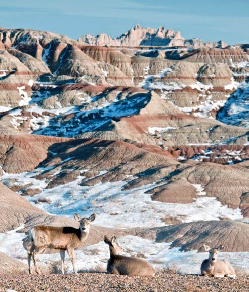 Badlands Wyoming Map.The Irresistible Beauty Of Badlands National Park Badlands