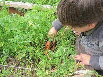 Discovering Waldorf :: The Daily Rhythm in a Waldorf School - The Magic Onions