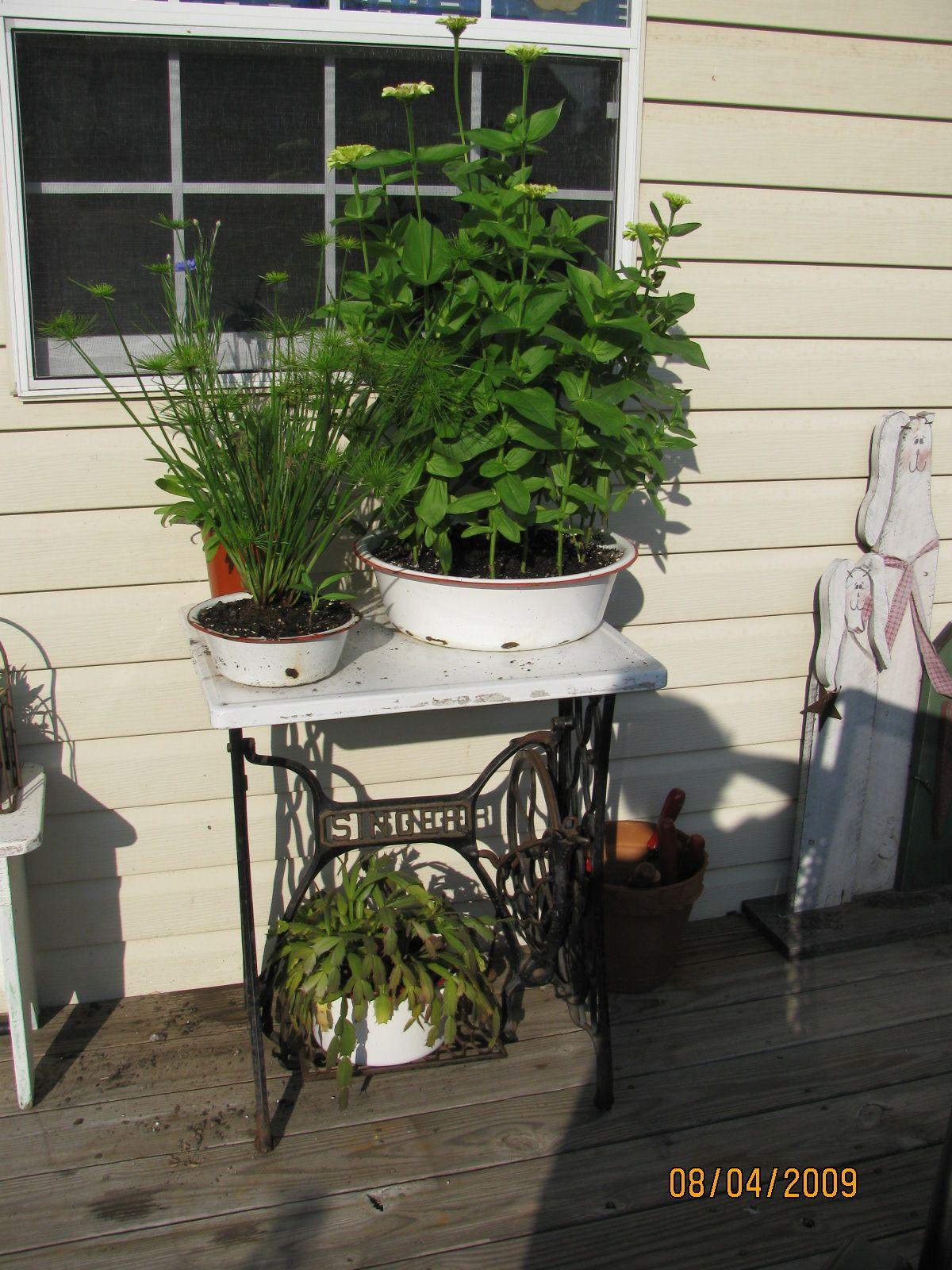 Home decor plants ideas  old enamel pots  Home Decor  Pinterest  Gardens Container