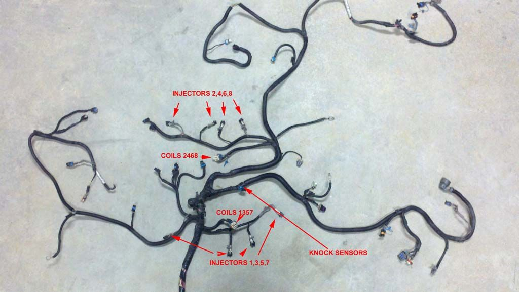 2fc4a695de08e1f3011bdd72df94d680 vortec 4 8 5 3 6 0 wiring harness info go back & see which pins 5.3 Engine Swap Wiring Harness at crackthecode.co