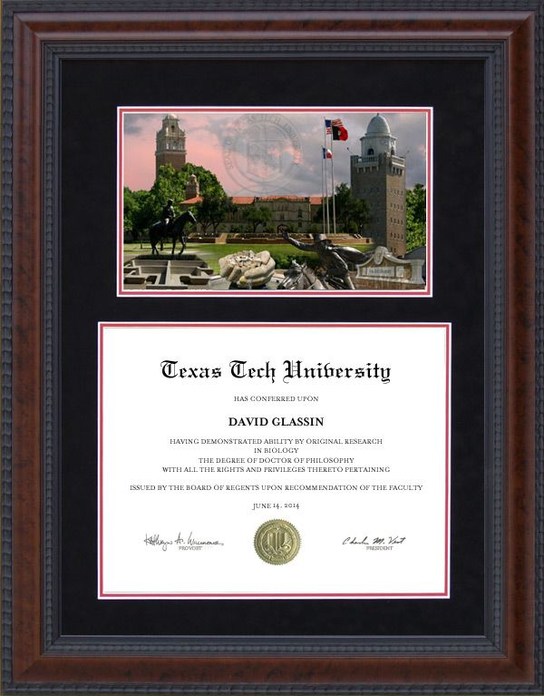 Texas Tech Diploma Frame with Suede Mat and Campus Photo | Products ...