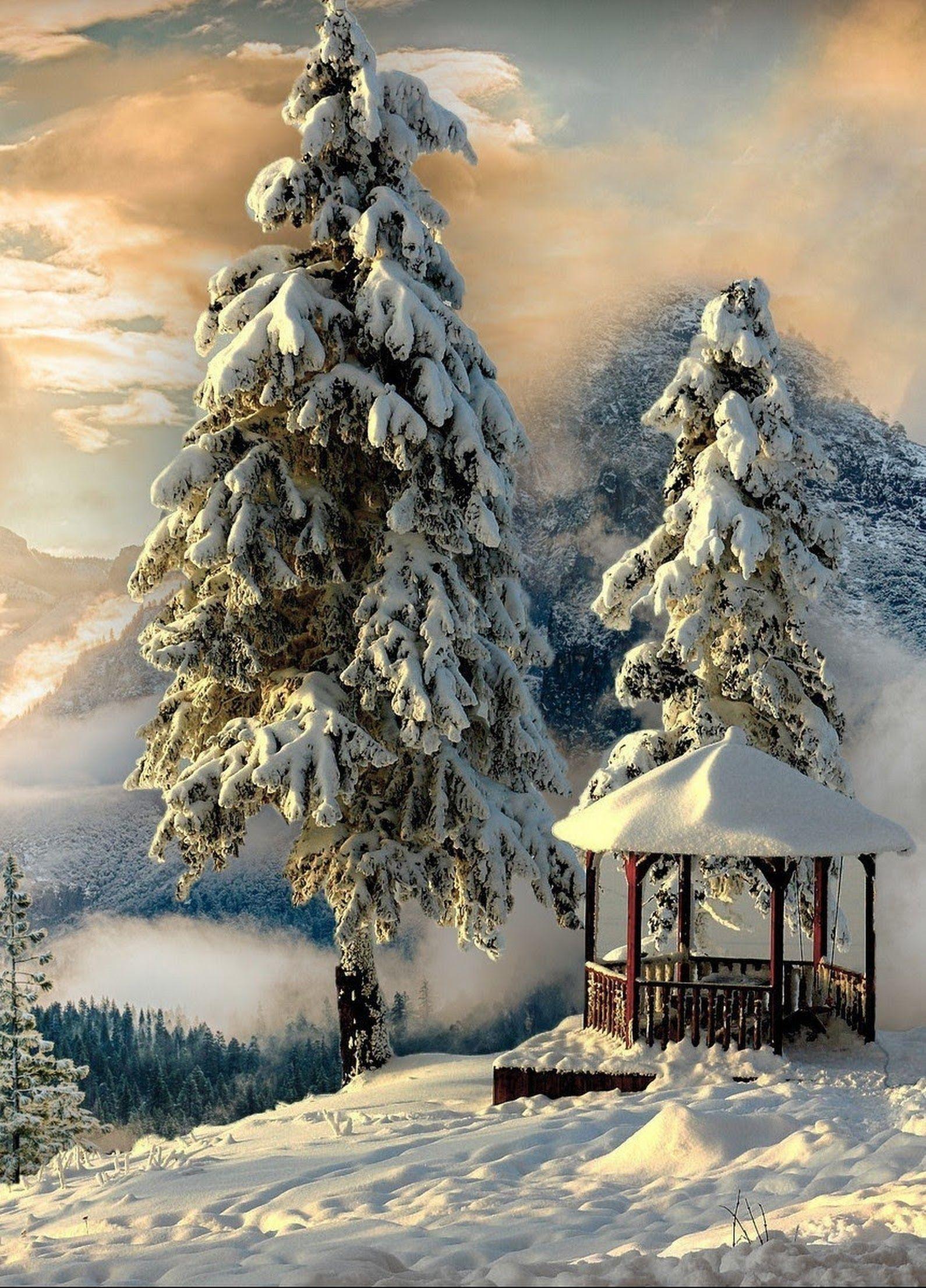 BELLO PAISAJE NEVADO - Isabel Carrasco - Google+   winter ...