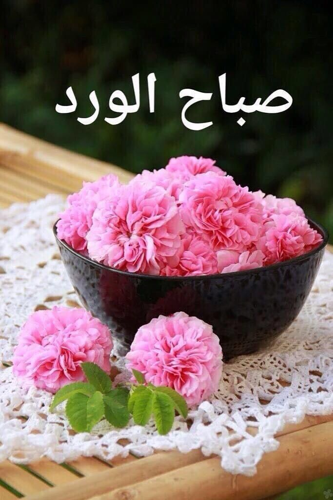 Epingle Par Shosho Sur صباح الخير Good Morning Image De Bisous Images Bonjour Bonjour Mon Coeur