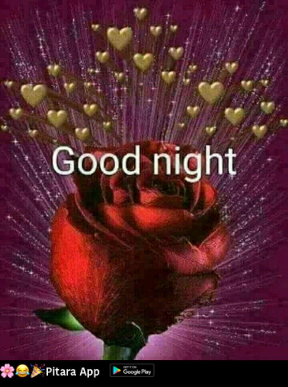 Schlaf Gut Daizo Goodnight Msgs Good Night Quotes Night