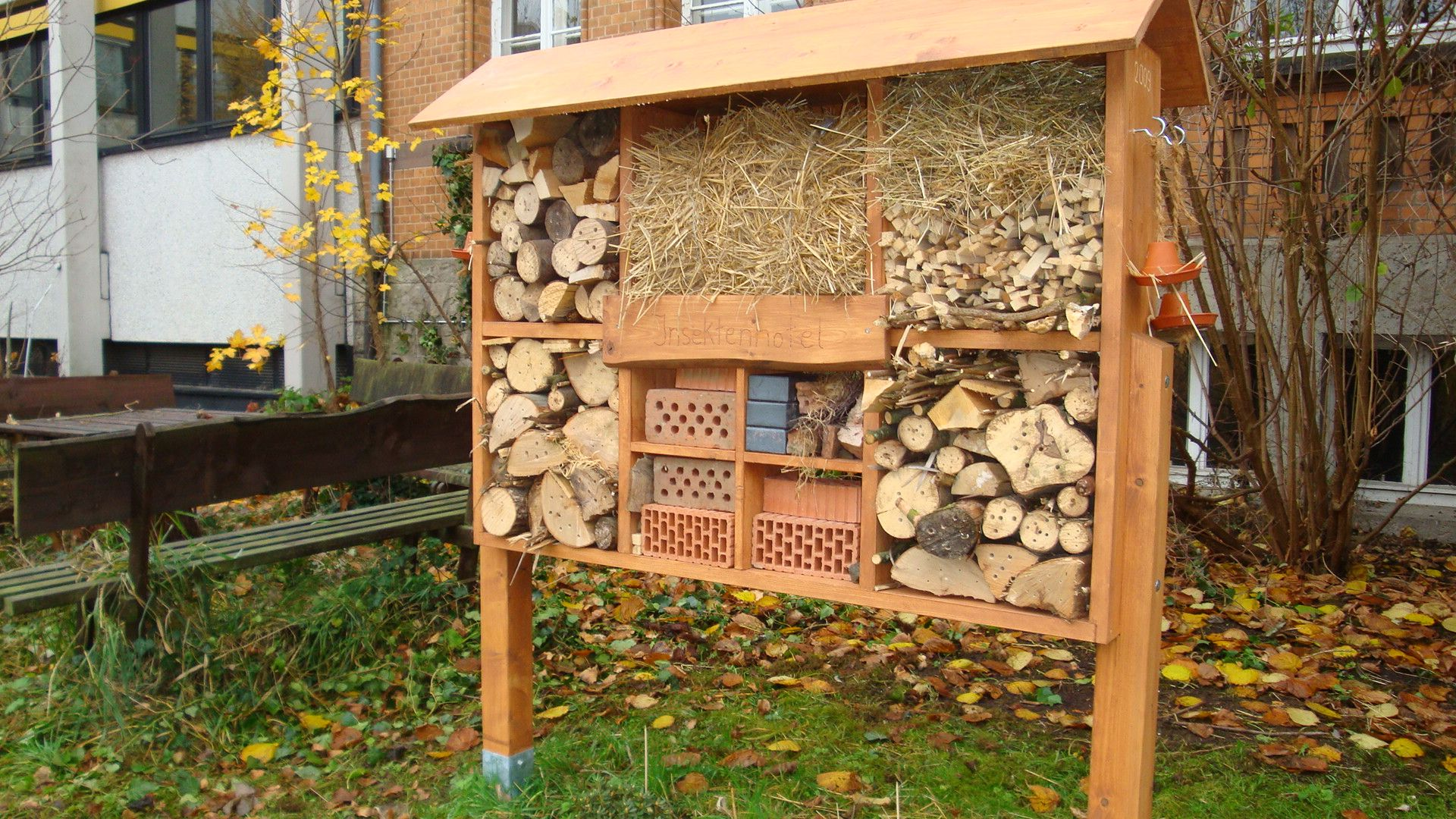 insekten insektenhotel pinterest insect hotel bug. Black Bedroom Furniture Sets. Home Design Ideas