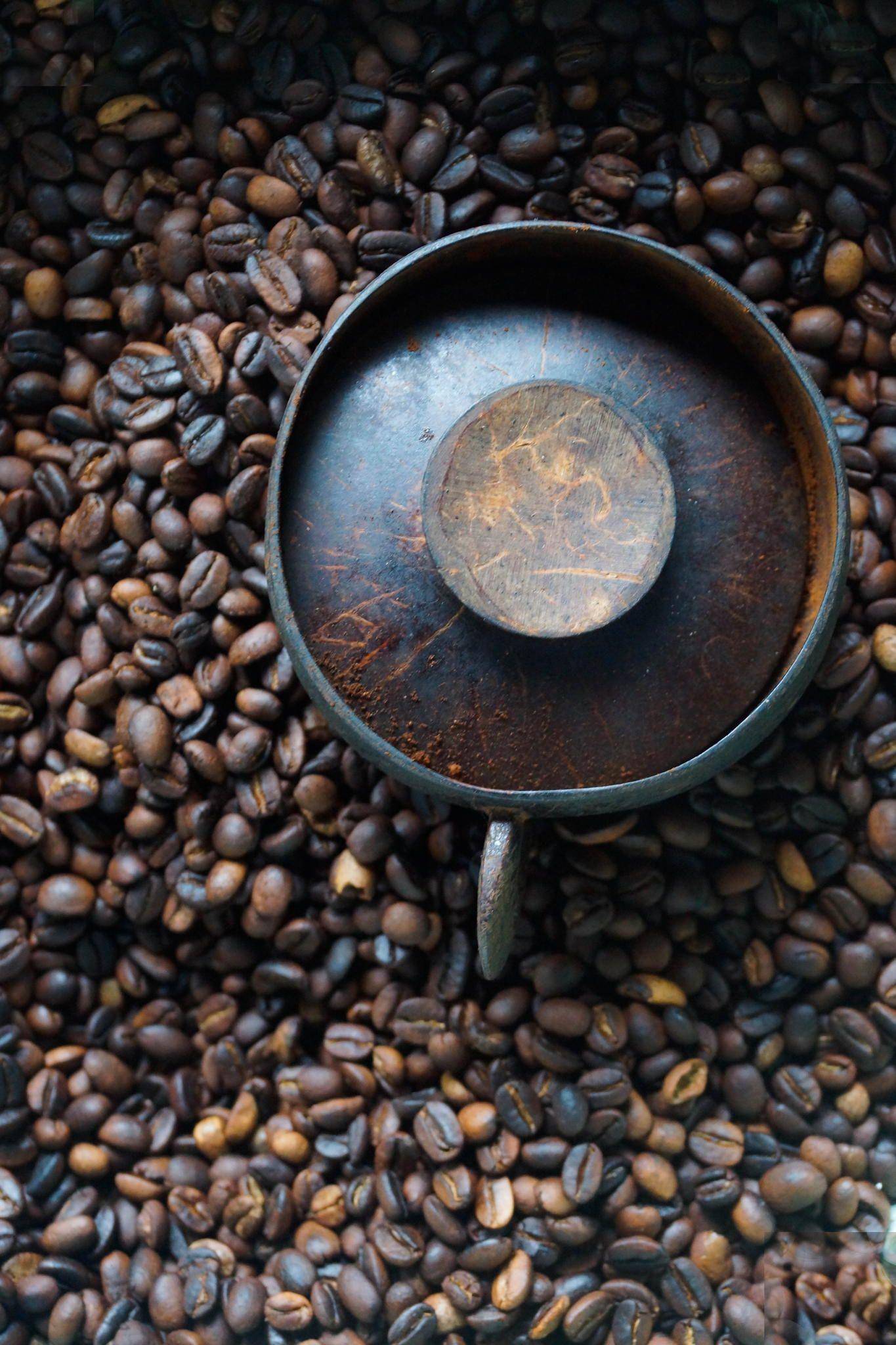 Kopi Luwak, the finest coffee bean, Ubud, Tegalalang, Bali