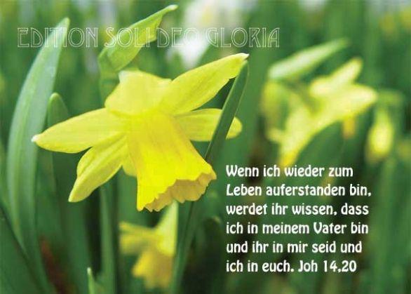 christliche Postkarte 64, Ostern, Auferstehung, Sieg - Bibel a la Carte - Christliche Karten