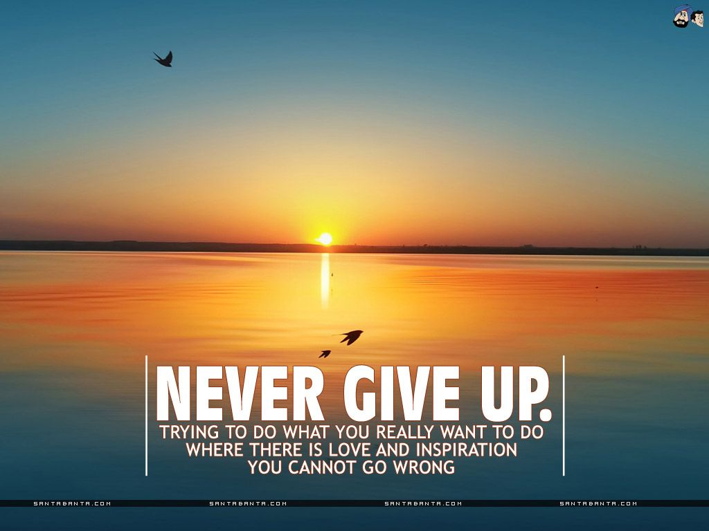 Never Give Up Motivational Wallpaper Motivational Wallpaper Funny Inspirational Quotes Inspirational Wallpapers